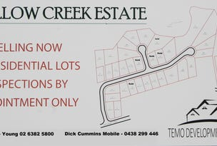 Lot 1 / 63 Templemore Street (Proposed Subdivision), Young, NSW 2594