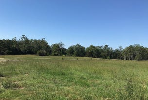 Lot 32 Stage 1 Beechwood Meadows, Beechwood via, Wauchope, NSW 2446