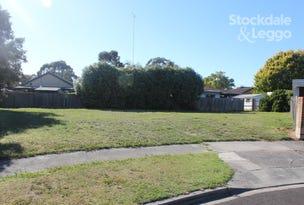 2 Fraser Court, Morwell, Vic 3840