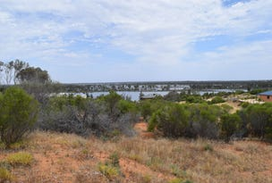 42 Wheatley Road, Loxton, SA 5333