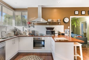 19 Tamar Crescent, Banksia Park, SA 5091