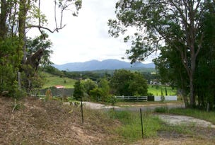 Lot 591, Old Brierfield Road, Bellingen, NSW 2454
