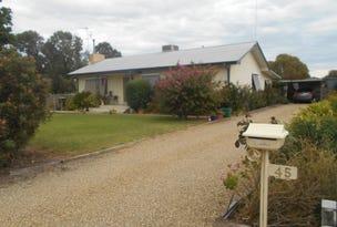45 Drummond St, Berrigan, NSW 2712