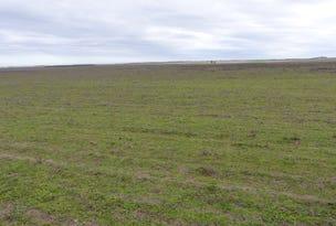 1 Hills Road, Parilla, SA 5303
