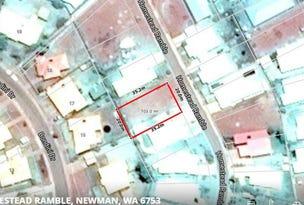 41 Homestead Ramble, Newman, WA 6753