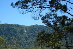 Lot 150, Darkwood Road Thora, Bellingen, NSW 2454