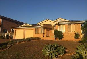 71 Hinchinbrook Drive, Hinchinbrook, NSW 2168