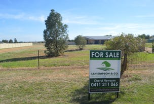 Lot 101 McDonald Lane, Canowindra, NSW 2804