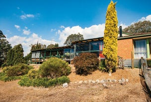 167  Ti Tree Drive, Eildon, Vic 3713