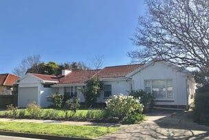 19 Gardiner Avenue, Warradale, SA 5046