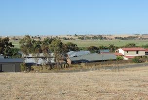 205 Rivervine Court, White Sands, SA 5253