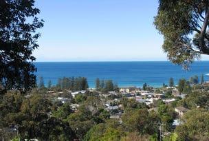12 Cheryl Crescent, Newport, NSW 2106