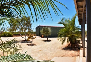Lot 307 Minilya-Exmouth Road, Exmouth, WA 6707
