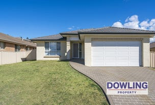 169 Northlakes Drive, Cameron Park, NSW 2285