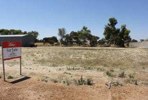 21 Cheetham Way, Narembeen, WA 6369