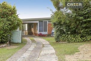 147 Andrew Road, Valentine, NSW 2280