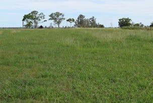 Lot 225, Lower Coldstream Road, Ulmarra, NSW 2462