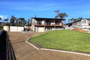 157 Sommers Bay Road, Murdunna, Tas 7178