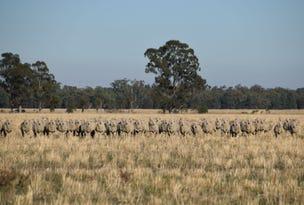 'Gilway' Balladoran Road, Gilgandra, NSW 2827