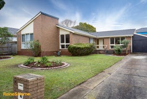 36 Camelot Drive, Glen Waverley, Vic 3150