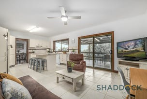 7 Reidy Place, Singleton Heights, NSW 2330