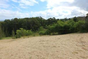 25 Lorikeet Way, Tallwoods Village, NSW 2430