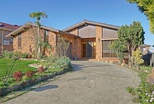 20 Mimosa Road, Bossley Park, NSW 2176