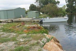 41 & 43 Aquaculture Drive, St Helens, Tas 7216