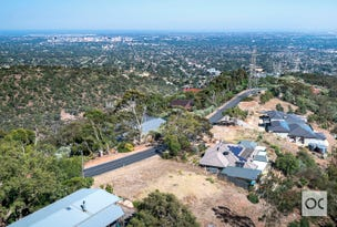 71 Woodland Way, Teringie, SA 5072