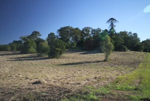 Lot 17 Fernvale Drive, Pie Creek, Qld 4570