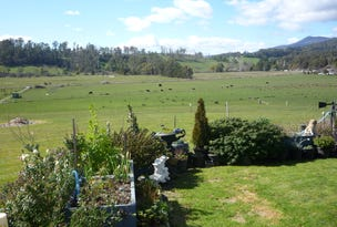 100 Karoola Road, Karoola, Tas 7267