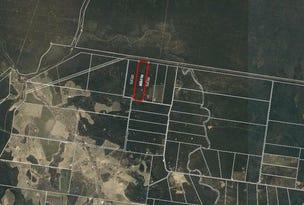 200 Bark Road, Condamine Farms, Qld 4357