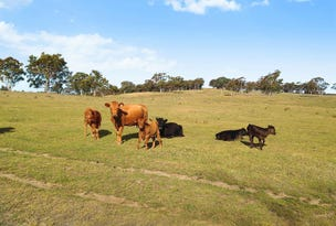 Proposed Lot 2/840 Marked Tree Road, Gundaroo, NSW 2620