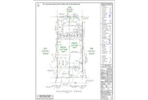 Lot 401, 54 Kalangedy Drive, Riverton, WA 6148