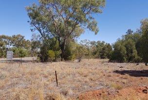 Lot 14 and 15 Gibbagunyah Munda Road, Miandetta, NSW 2825