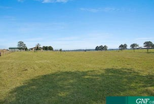 65 Bairnsdale School Rd, Yorklea, NSW 2470