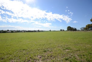 Lot 93 Saddleworth Road, Auburn, SA 5451