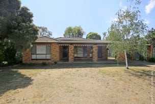 21 Pinaroo Drive, Glenfield Park, NSW 2650