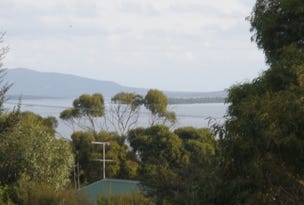 Lot 19 Moonbird Street, Lady Barron, Tas 7255