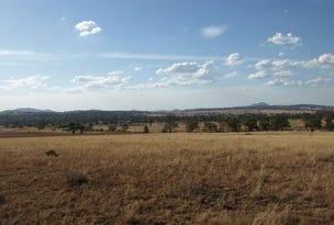 55 Annies Lane, Quirindi, NSW 2343