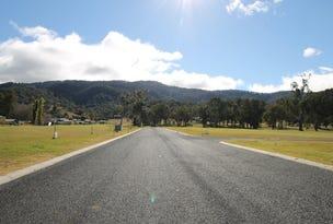 Lot 1, Little Street, Murrurundi, NSW 2338