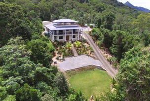 258 Forest Creek Road Forest Creek, Daintree, Qld 4873