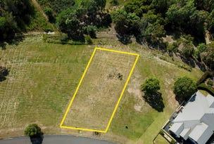 Lot 507 Hurdzans Reach, Tallwoods Village, NSW 2430