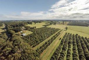 250 Dalwood Road, Dalwood, NSW 2477
