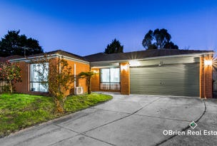 14 Newberry Retreat Court, Hampton Park, Vic 3976
