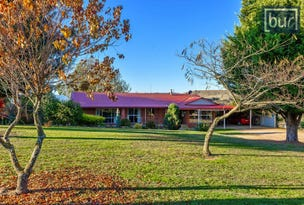 49 Perkins Rd, Lucyvale, Vic 3691