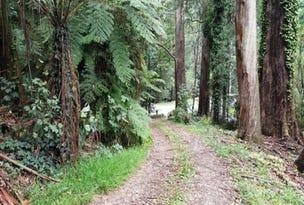 Lot 7, 43 Perrins Creek Road, Kallista, Vic 3791