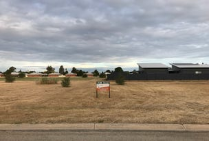 Lot 98, TEDDYS Lane, Barham, NSW 2732