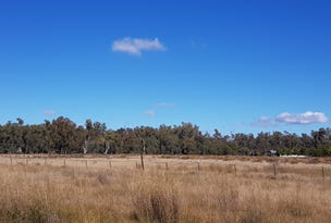 Lot 22 Nth Forbes Rd, Condobolin, NSW 2877