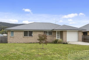 9 Riverstone Close, Snug, Tas 7054